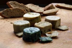 גבינות צמחיות של Happy Cheeze. אותו דבר, רק טוב יותר וידידותי יותר לסביבה , לבעלי החיים ולבני האדם. (צילום: Happy Cheeze)